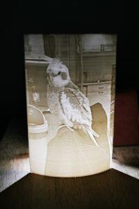loki lamp (3)